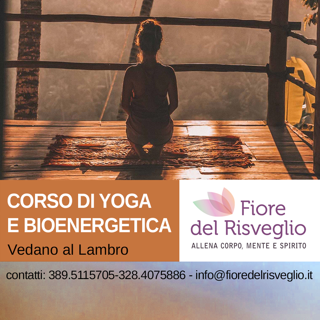 quadra–Yoga-e-Bioenergetica